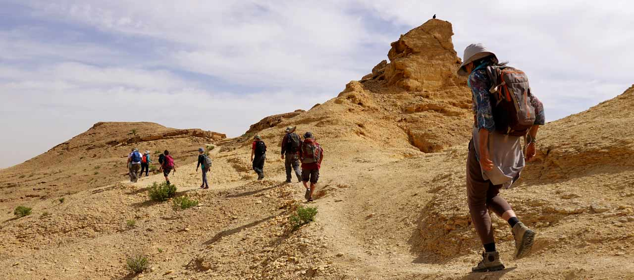 סובב רמון - מסלול טיולים במכתש רמון
