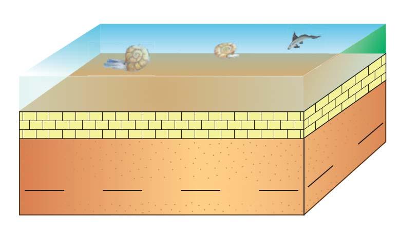 סלע משקע קשה מעל אבן חול רכה