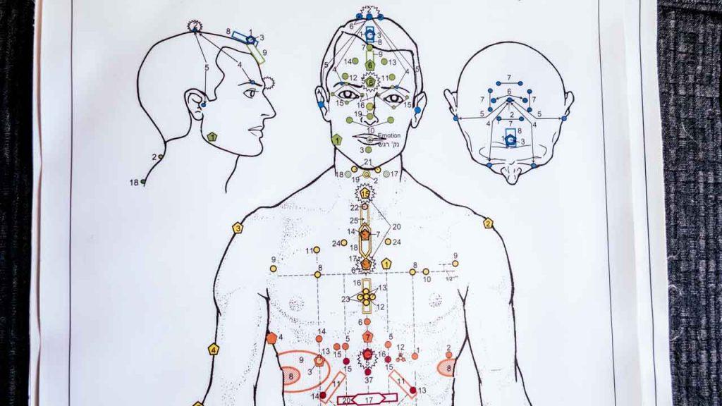 תרשים גוף האדם - שיטת איזון חיים